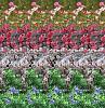 اضغط على الصورة لعرض أكبر  الاســـم:get-9-2008-mejt1f66wq1.jpg المشاهدات:83 الحجـــم:20.4 كيلوبايت الرقم:39